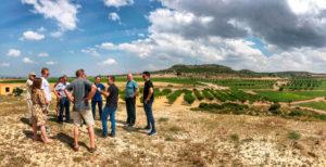 visitas a los viñedos de las bodegas de DO Almansa en accion inversa